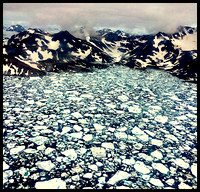 July Ice, East Greenland